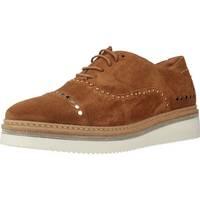 Schuhe Damen Derby-Schuhe Alpe 3564 11 Brown
