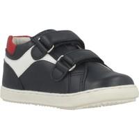 Schuhe Jungen Sneaker Low Chicco GIAN Blau