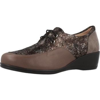 Schuhe Damen Derby-Schuhe Argenta 30251 Brown