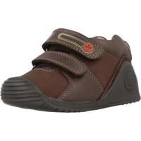 Schuhe Jungen Sneaker Low Biomecanics 181145 Brown