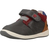 Schuhe Jungen Sneaker Low Garvalin 181321 Grau