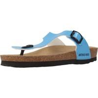 Schuhe Damen Zehensandalen Antonio Miro 316602 Blau