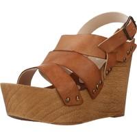 Schuhe Damen Sandalen / Sandaletten Antonio Miro 316706 Brown