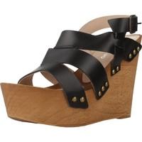 Schuhe Damen Sandalen / Sandaletten Antonio Miro 316706 Schwarz