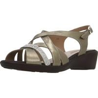 Schuhe Damen Sandalen / Sandaletten Piesanto 180558 Brown