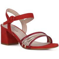 Schuhe Damen Sandalen / Sandaletten Priv Lab SANDALO 1577 Rosso
