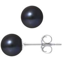 Uhren Damen Ohrringe Blue Pearls BPS K301 W  OB Multicolor