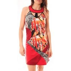 Kleidung Damen Kurze Kleider Bamboo's Fashion Robe BA1501 Rouge Rot