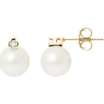 Uhren & Schmuck Damen Ohrringe Blue Pearls BPS K602 W Multicolor