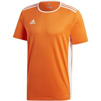 Kleidung Jungen T-Shirts adidas Originals - T-shirt arancione CD8366 ARANCIONE