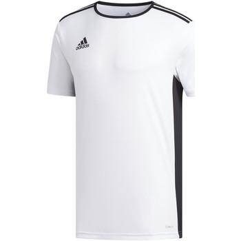 Kleidung Jungen T-Shirts adidas Originals - T-shirt bianco CD8438 J BIANCO