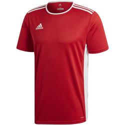 Kleidung Jungen T-Shirts adidas Originals - T-shirt rosso CF1038 ROSSA