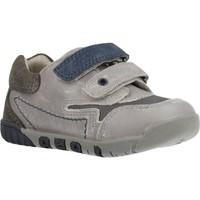 Schuhe Jungen Sneaker Low Chicco 1060451 Grau