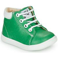Schuhe Jungen Sneaker High GBB FOLLIO Grün