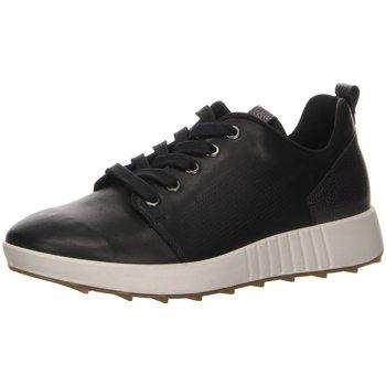 Schuhe Damen Sneaker Low Legero Schnuerschuhe schuhe LK \ ESSENCE 5-00923-01 schwarz