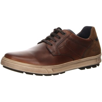 Schuhe Herren Sneaker Low Camel Active Schnuerschuhe La Paz 543.11.02 braun
