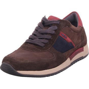 Schuhe Herren Sneaker Low Sioux Rojaro-700 braun