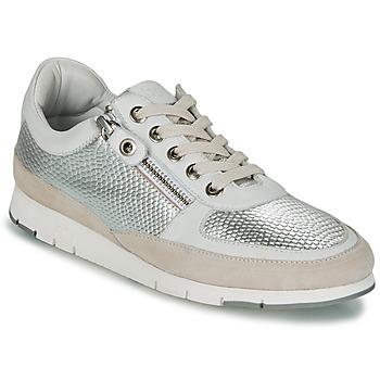 Schuhe Damen Sneaker Low TBS CAVANNA Silbern / Beige