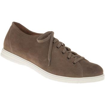 Schuhe Herren Sneaker Low Lui By Tessamino Schnürer Stefano Farbe: braun braun