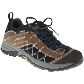 Schuhe Herren Wanderschuhe Alpina Schnürer Conny Farbe: braun braun