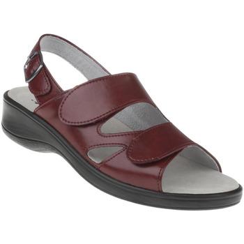 Schuhe Damen Sandalen / Sandaletten Natural Feet Sandalen Cornelia Farbe: rot rot