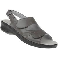 Schuhe Damen Sandalen / Sandaletten Natural Feet Sandalen Cornelia Farbe: grau grau