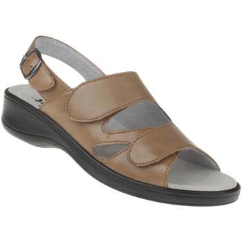 Schuhe Damen Sandalen / Sandaletten Natural Feet Sandalen Cornelia Farbe: hellbraun hellbraun