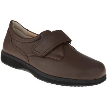 Schuhe Herren Derby-Schuhe Natural Feet Kletter Klaas XL Farbe: braun braun