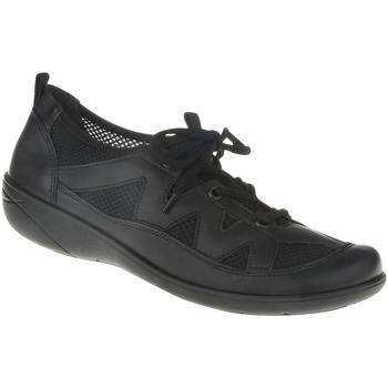 Schuhe Damen Derby-Schuhe Lei By Tessamino Schnürer Eva Farbe: schwarz schwarz