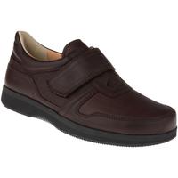 Schuhe Herren Derby-Schuhe Natural Feet Kletter Korbin XL Farbe: braun braun