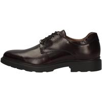 Schuhe Herren Derby-Schuhe NeroGiardini A901141U BORDEAUX