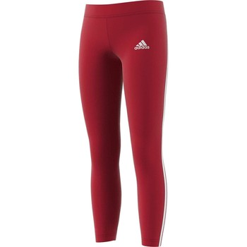 Kleidung Mädchen Leggings adidas Originals YG MH 3S TIGHT BORDEAUX Rot
