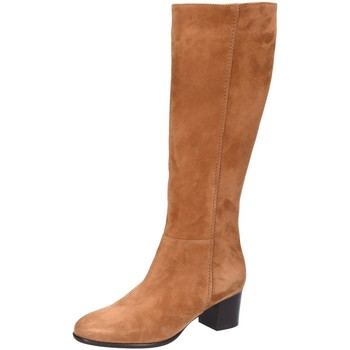 Schuhe Damen Klassische Stiefel Lamica Stiefel Quela 6246 Cognac L-Schaft QUELA 6246 L COGNAC braun