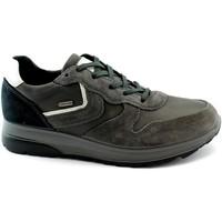 Schuhe Herren Sneaker Low IgI&CO IGI-I19-4134822-NA Grigio