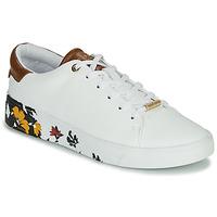 Schuhe Damen Sneaker Low Ted Baker WENIL Weiss