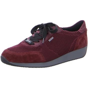 Schuhe Damen Derby-Schuhe & Richelieu Ara Schnuerschuhe LISSABON 12-44063-05 rot