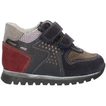 Schuhe Jungen Sneaker Low Nero Giardini A724331M Blaues Grau und Bordeaux