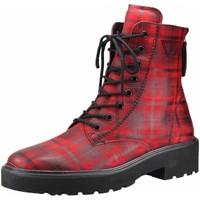 Schuhe Damen Stiefel Paul Green Stiefeletten Schnürstiefelette Kaltfutter 9581-005 Other