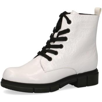 Schuhe Damen Stiefel Caprice Stiefeletten weiß