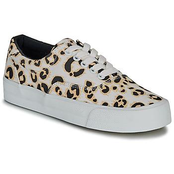 Schuhe Damen Sneaker Low Superdry CLASSIC LACE UP TRAINER Leopard