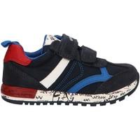 Schuhe Jungen Multisportschuhe Geox B943CC 0FU22 B ALBEN Azul