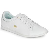 Schuhe Damen Sneaker Low Lacoste REY LACE 120 1 CFA Weiss / Gold