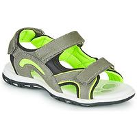 Schuhe Jungen Sportliche Sandalen Chicco CEDDER Grau / Grün