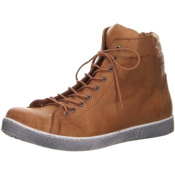 Schuhe Damen Stiefel Andrea Conti Stiefeletten Boots 0347843 braun