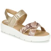 Schuhe Damen Sandalen / Sandaletten Geox D TAMAS Gold / Maulwurf