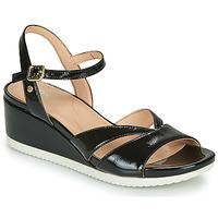 Schuhe Damen Sandalen / Sandaletten Geox D ISCHIA Schwarz