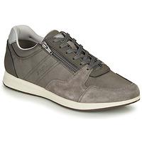 Schuhe Herren Sneaker Low Geox U AVERY Grau