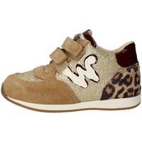 Schuhe Mädchen Sneaker Low Balducci CSP3701 BEIGE