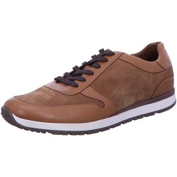 Schuhe Herren Sneaker Digel Halbschuh Sport Schnürschuh Braun Spinner 1299739-35 braun
