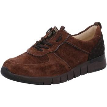 Schuhe Damen Derby-Schuhe & Richelieu Waldläufer Schnuerschuhe 908003-600/355 braun
